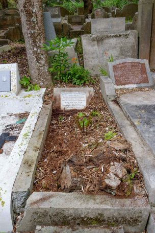 Samuel Cooke's grave