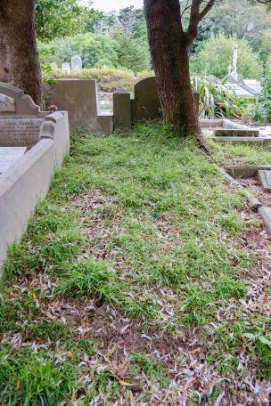 Stewart Robertson's grave